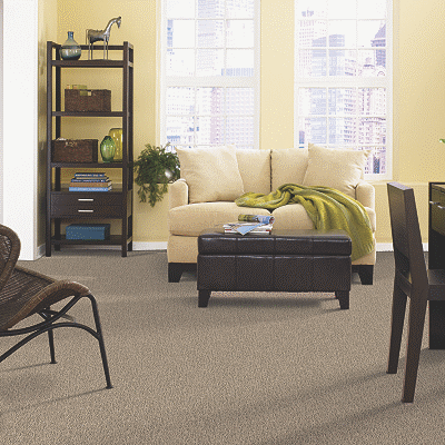 Luxurious Smartstrand Carpet